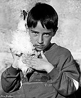 The child and the hen